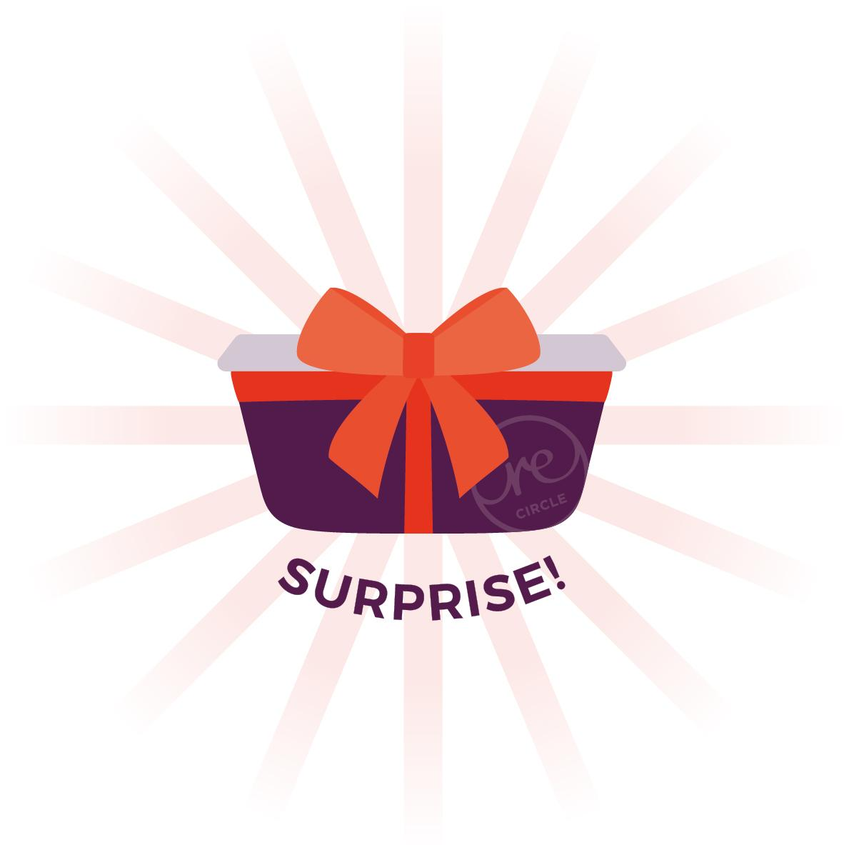 New: Order your surprise meal now online!